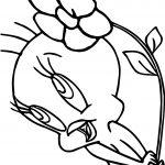 Tweety Flower Coloring Page