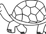 Walking Tortoise Turtle Coloring Page