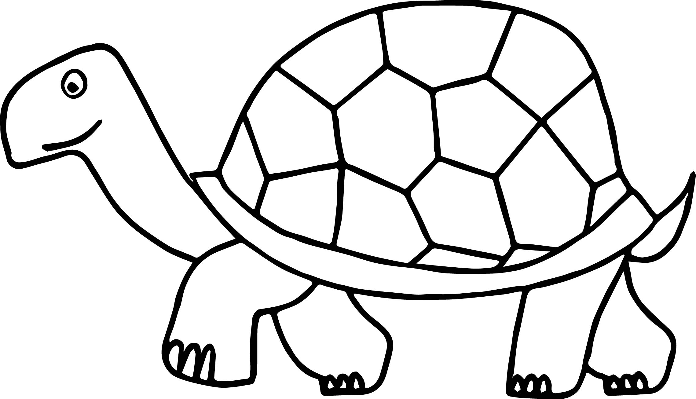 Walking tortoise turtle coloring page for Turtle coloring pages