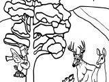 Winter Animals Coloring Page