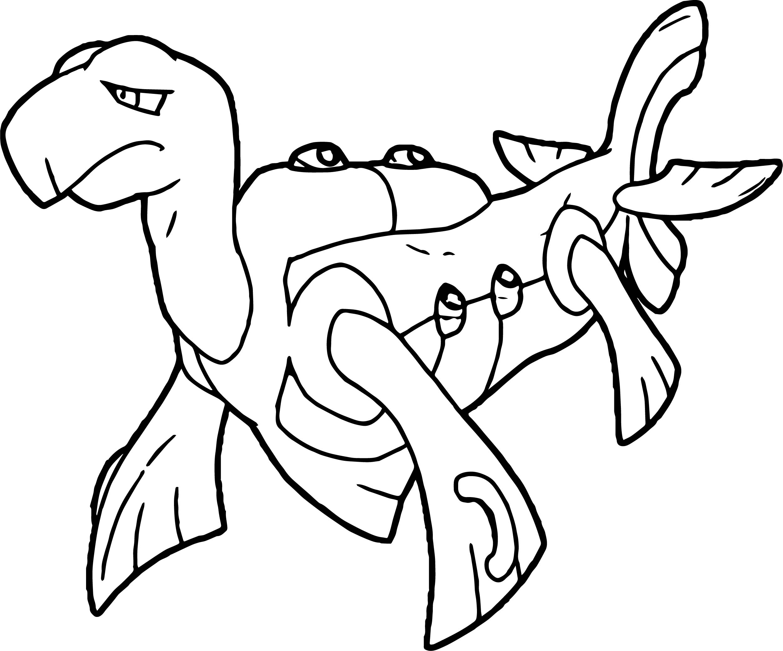Big Tortoise Turtle Coloring Page