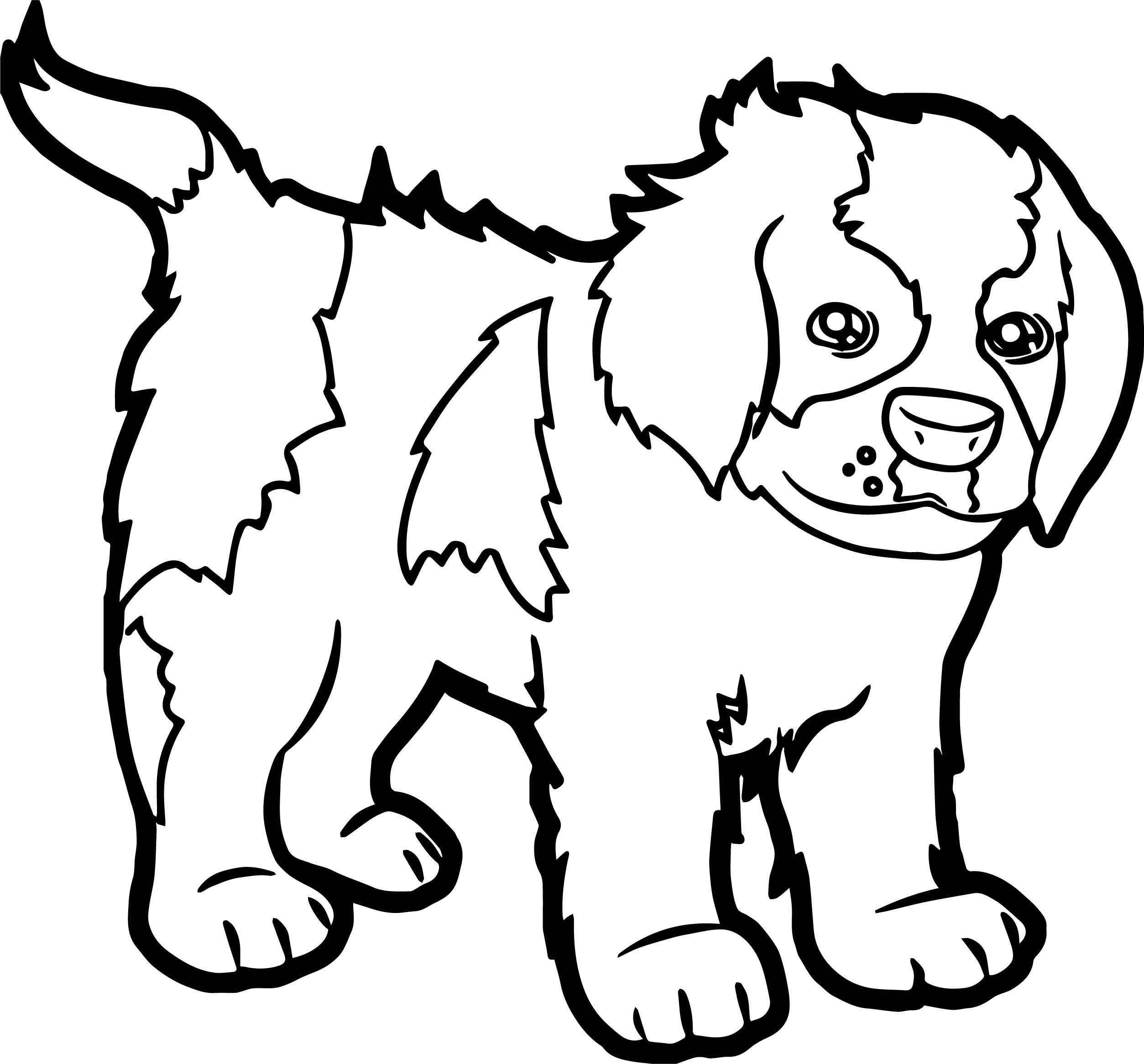 Cartoon Puppy Pictures Dog Coloring Page