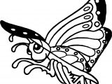 Rainforest Butterfly Coloring Page