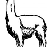 Simple Alpaca Coloring Page