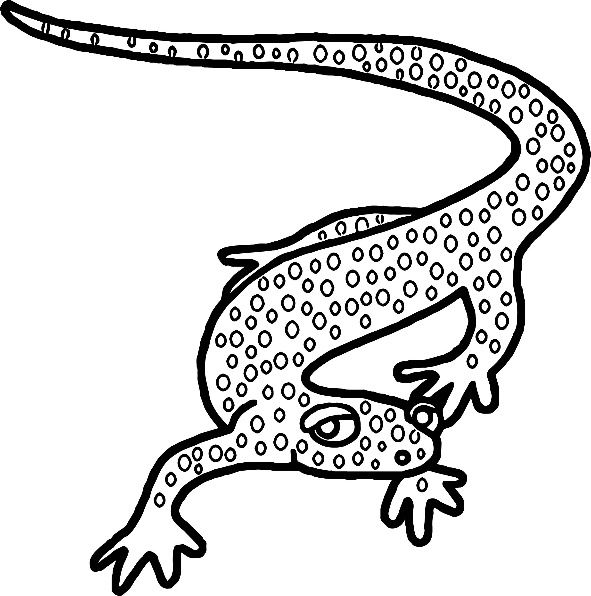 Amphibian Reptile Coloring Page