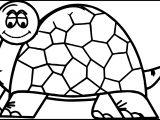 Amphibian Turtle Coloring Page