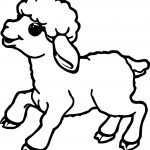 Cute Small Sheep Coloring Page