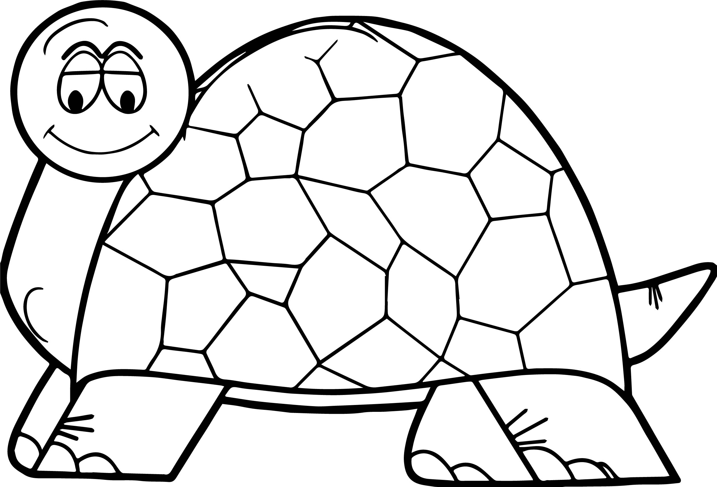 Cute thinking tortoise turtle coloring page for Turtle coloring pages