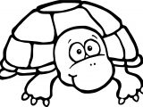 Cute Tortoise Turtle Coloring Page