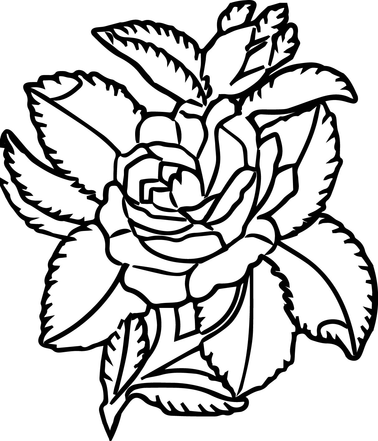 Free Rose Animations And Vectors Coloring Page