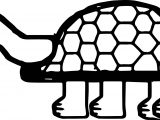 Girl Tortoise Turtle Coloring Pages