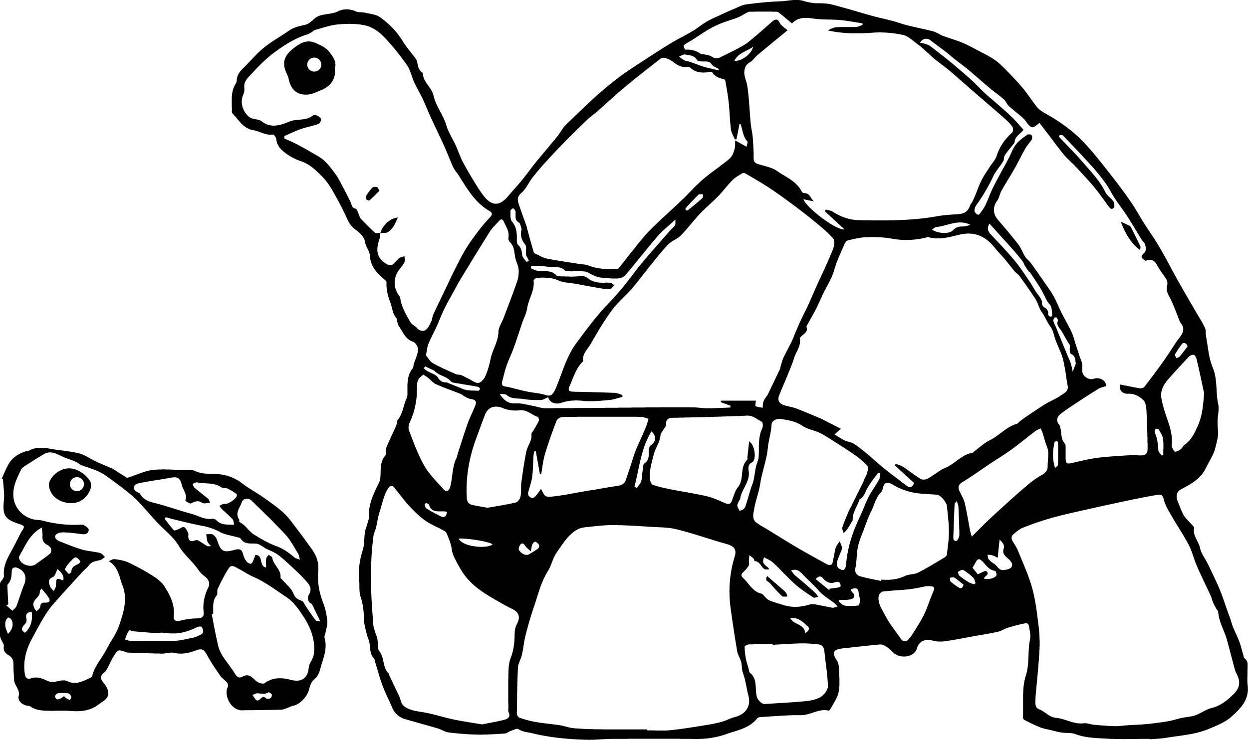baby turtle coloring page pages for adults adult baby