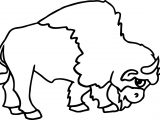 Native American Bison Coloring Page