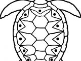 Sea Tortoise Turtle Coloring Page
