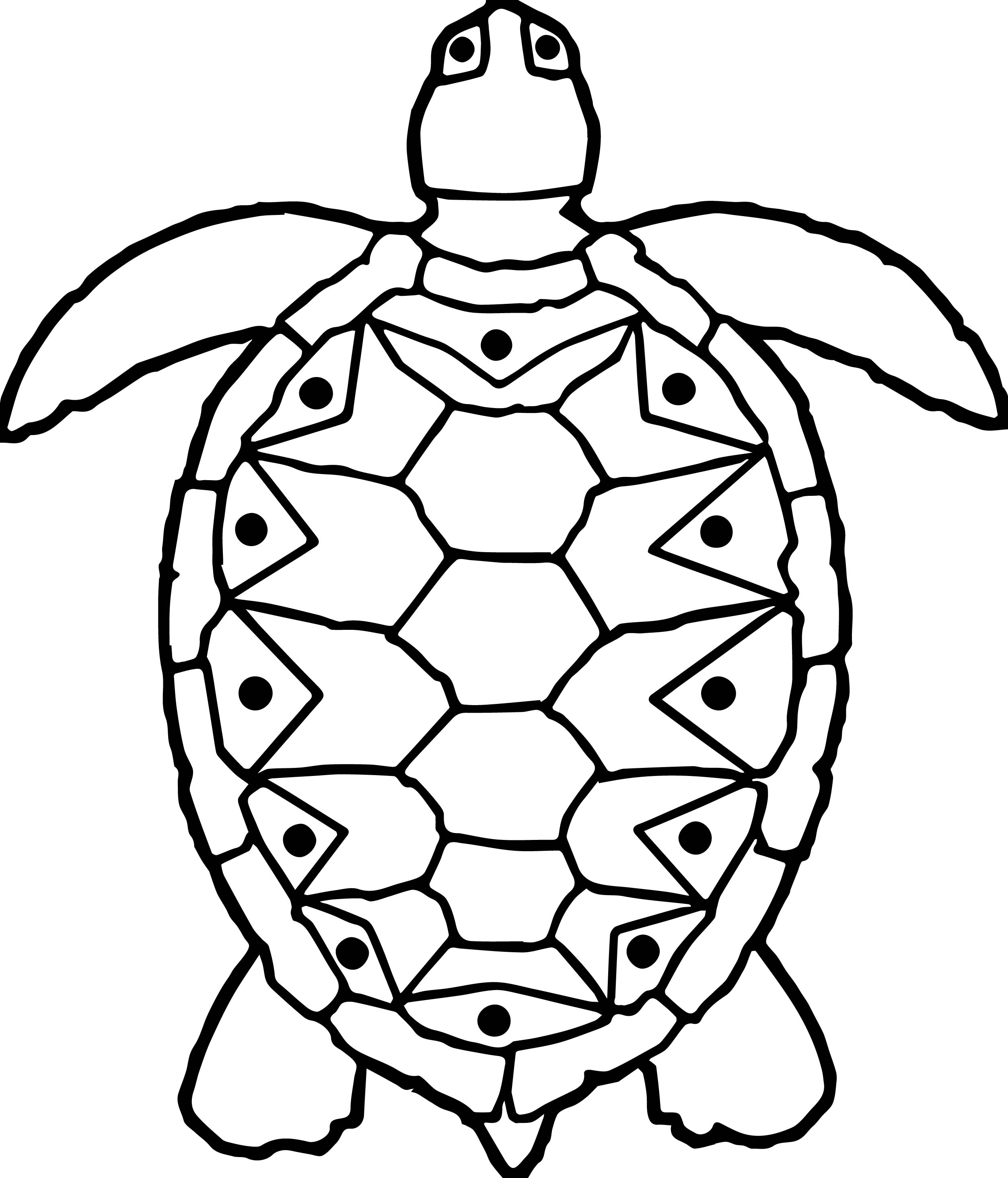 sea tortoise turtle coloring page wecoloringpage