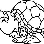 Slow Tortoise Turtle Coloring Page