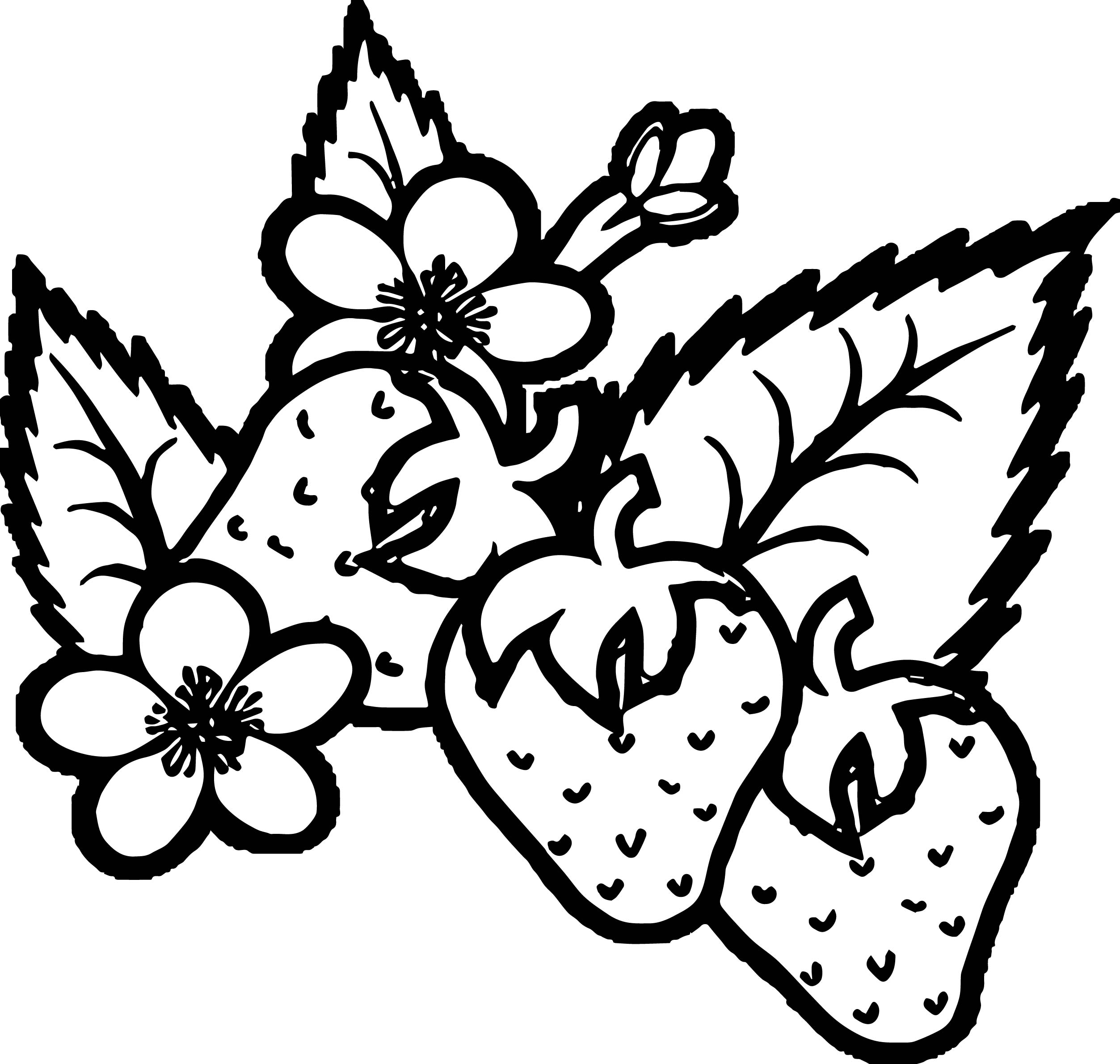 Strawberry Border Coloring Page