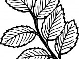 Summer Leaf Coloring Page