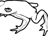Theresa Knott Frog Amphibian Coloring Page