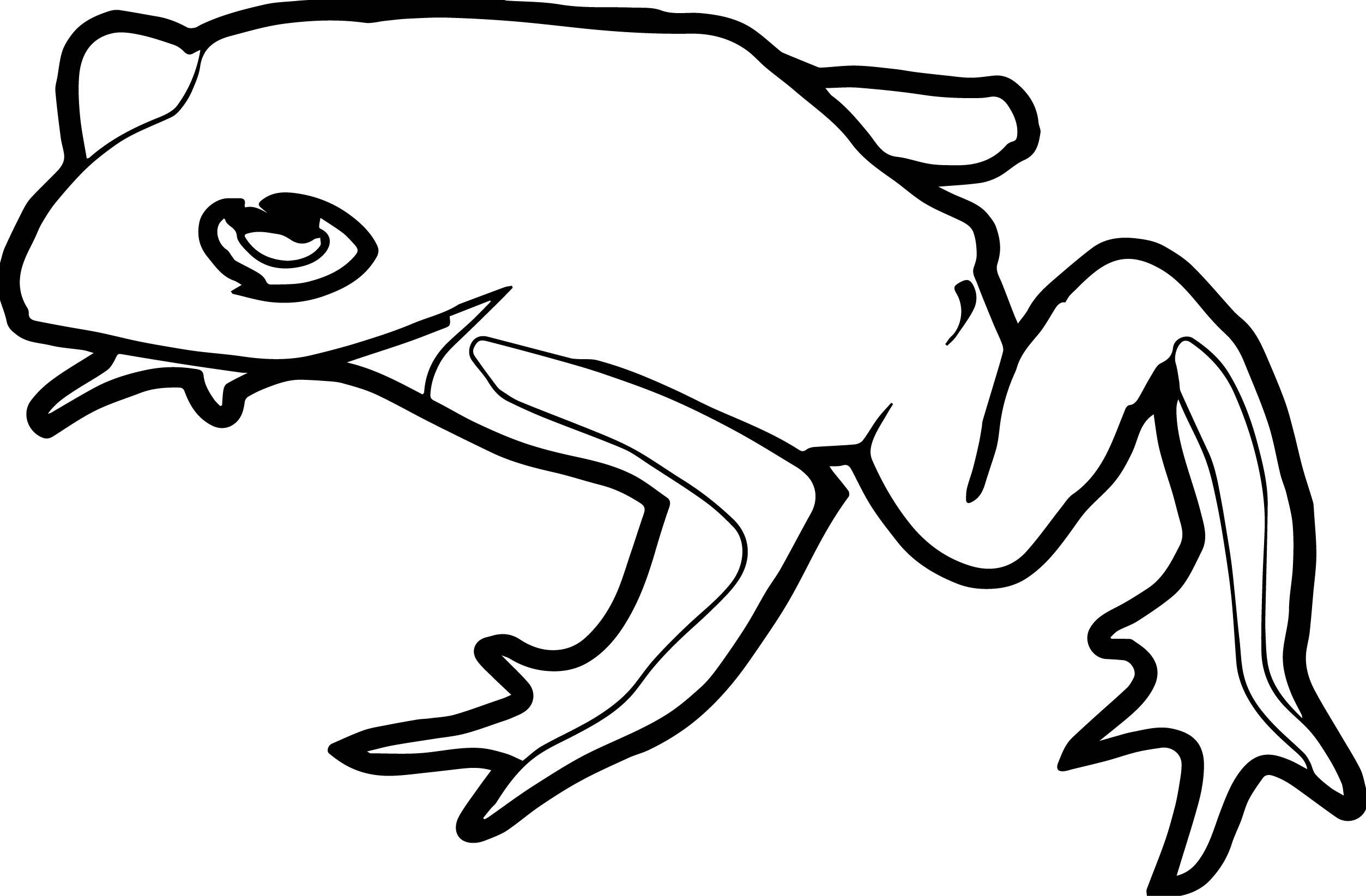 Theresa Knott Frog Amphibian Coloring Page