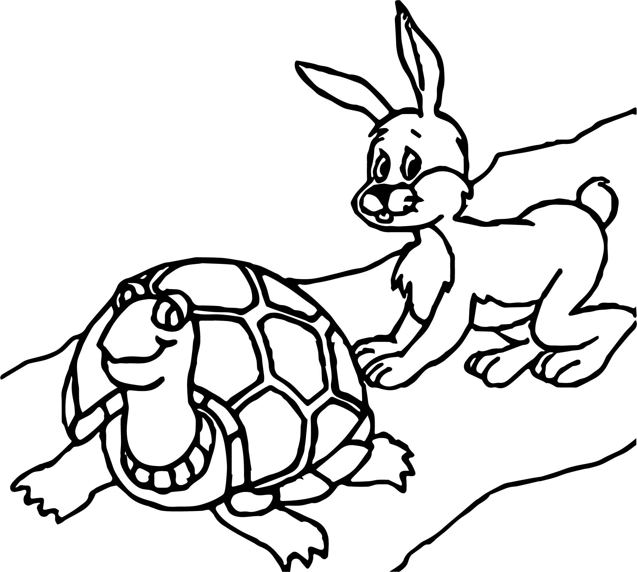 Tortoise Turtle Bunny Coloring PageTortoise Turtle Bunny Coloring Page