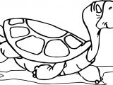 Tortoise Turtle Cool Walking Coloring Page