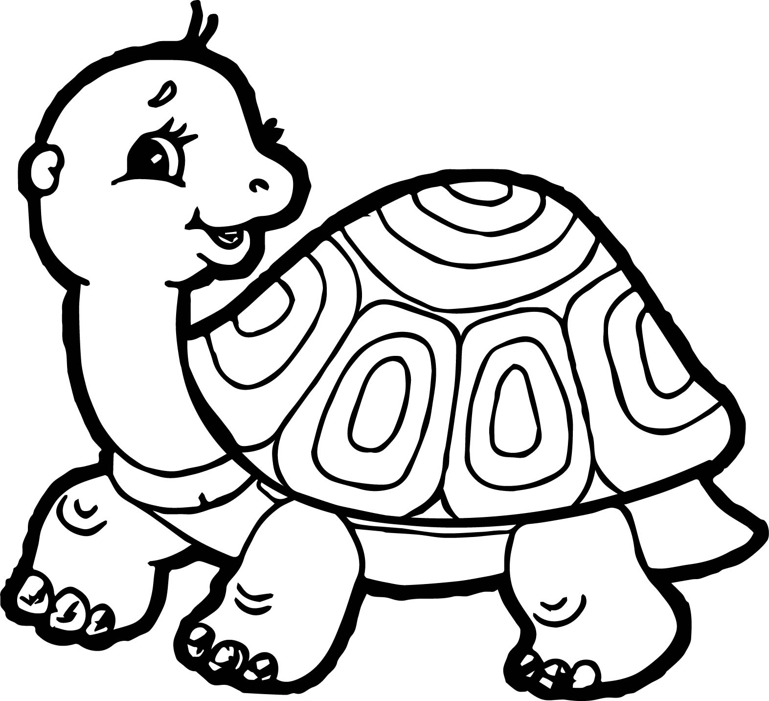 Tortoise Turtle Side Coloring Page