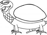 Tortoise Turtle Smile Coloring Pages