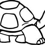 Tortoise Turtle Walking Coloring Page