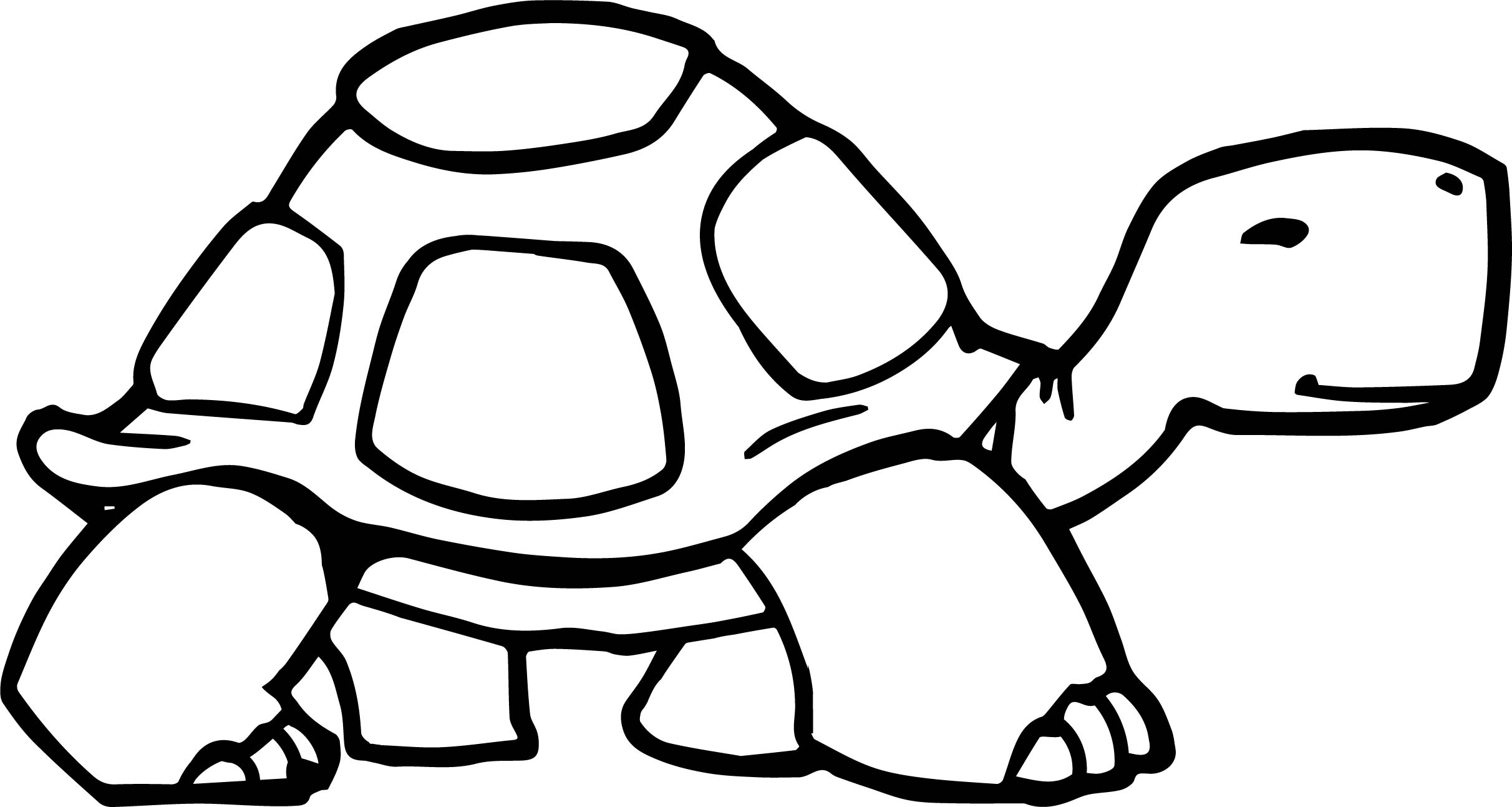 Tortoise Turtle Walking Coloring Page