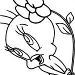 Tweety Flower Wind Coloring Page