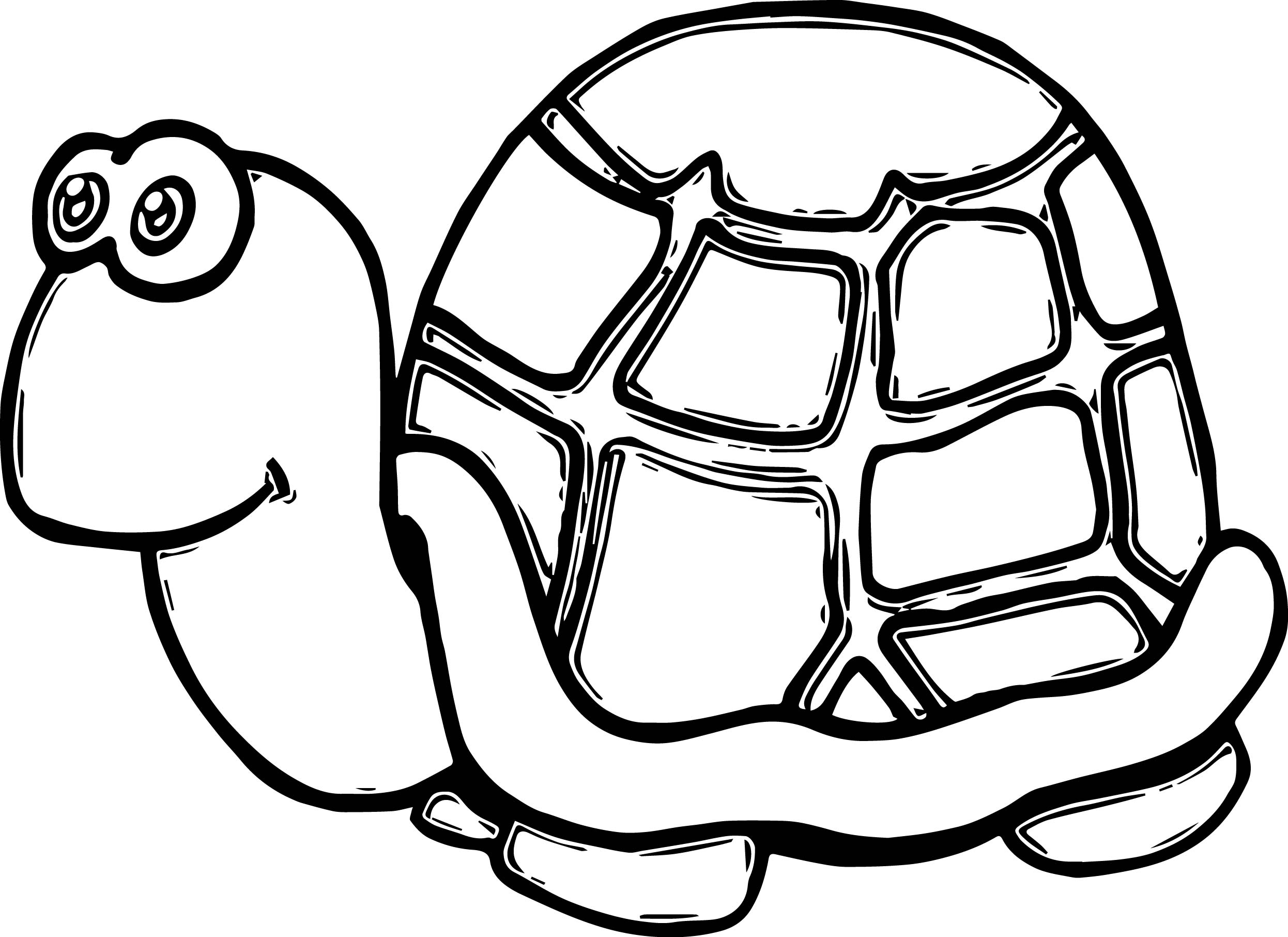 cute tortoise funny turtle coloring page wecoloringpage