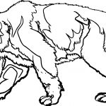 Ice Tiger Coloring Page