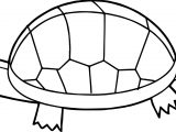 Old Walk Tortoise Turtle Coloring Pages