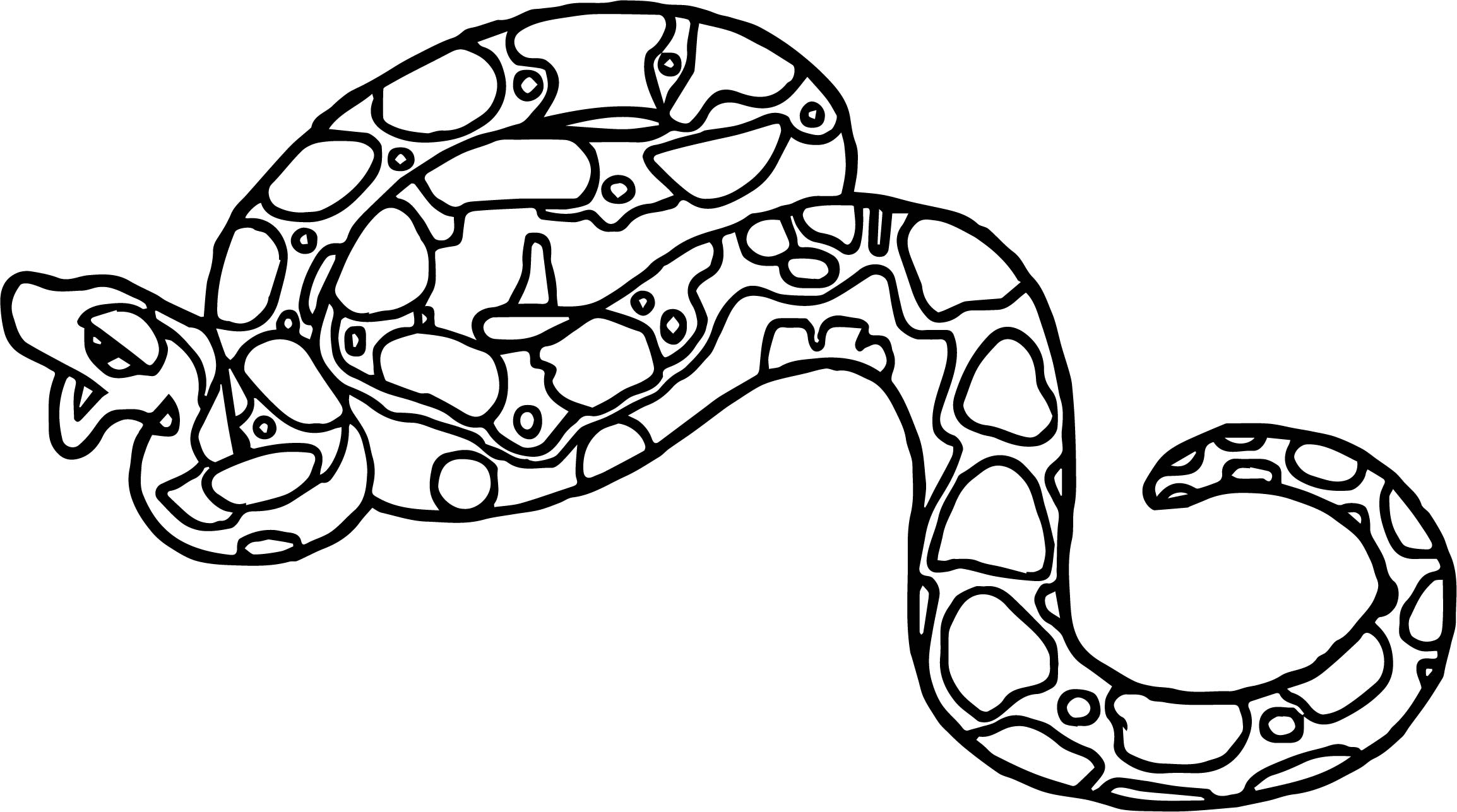Rainforest Boa Coloring Page