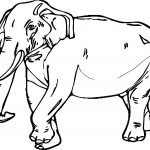 Realistic Elephant Coloring Page