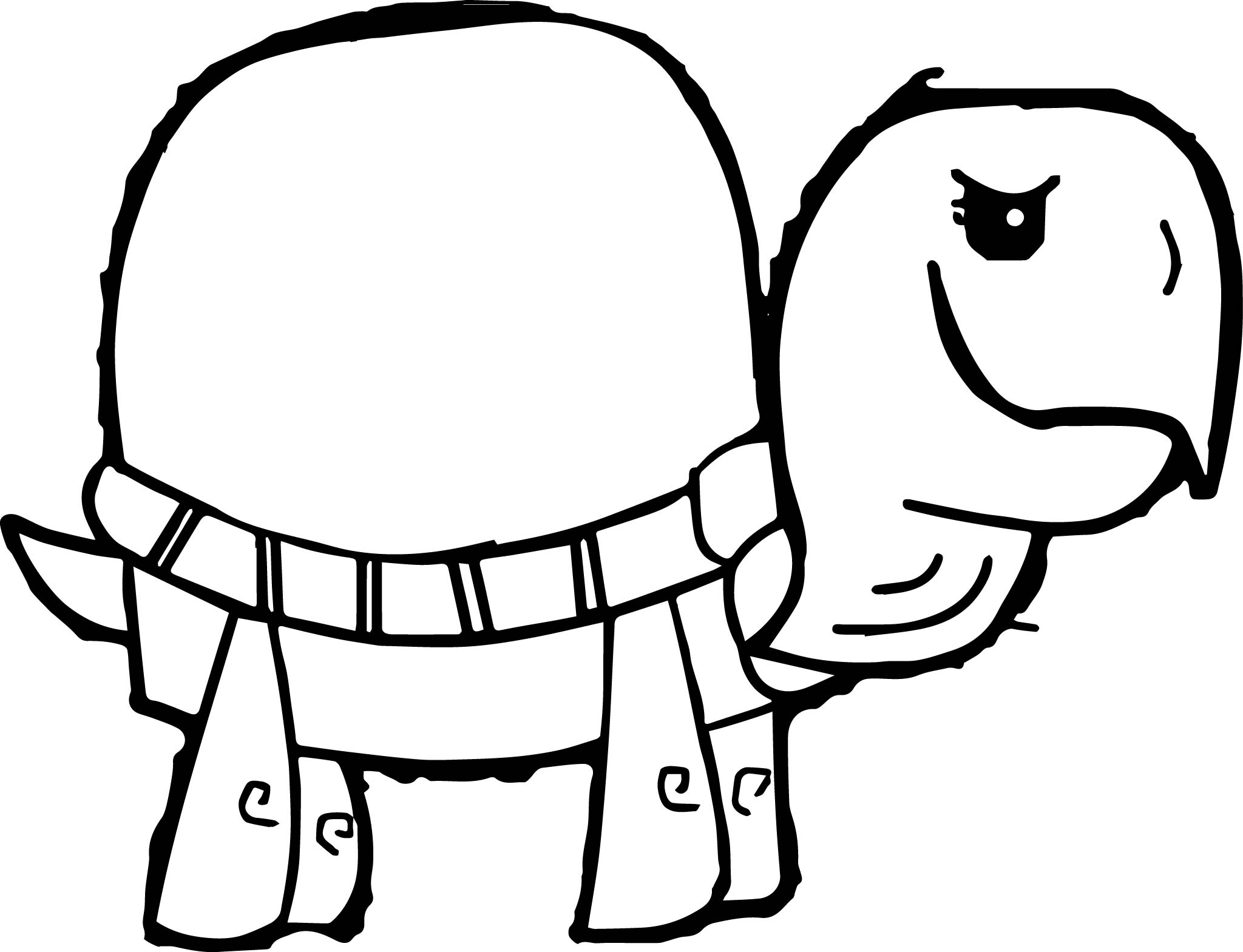 Tortoise Turtle Picture Coloring Page