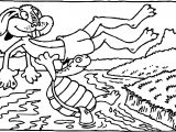 Tortoise Turtle River Coloring Page