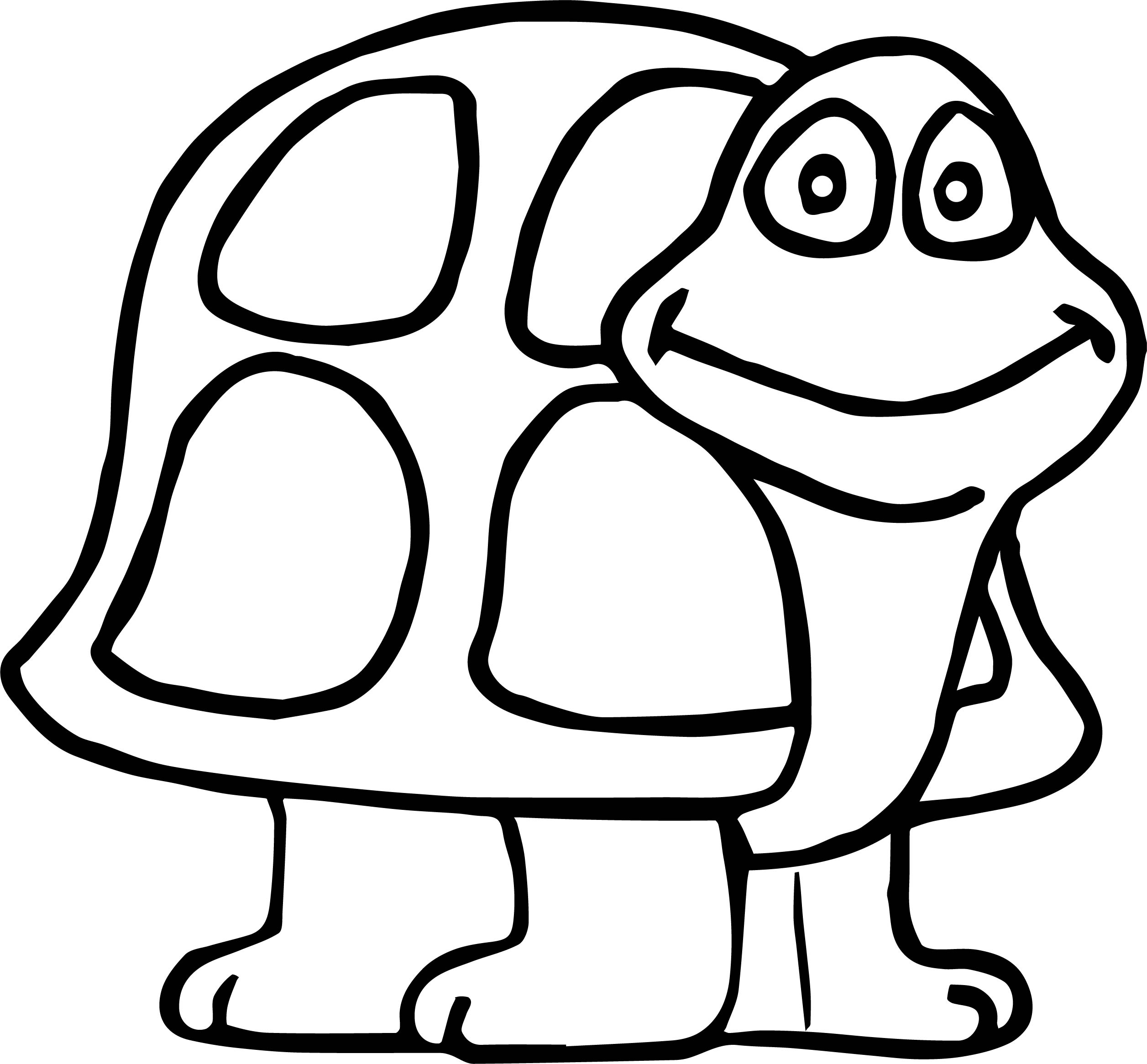 Tortoise Turtle Shell Coloring Page
