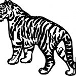 Waiting Tiger Coloring Page