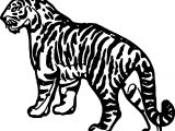 Waiting Tiger Coloring Page