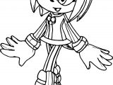 Perfect Amy Rose Coloring Pages