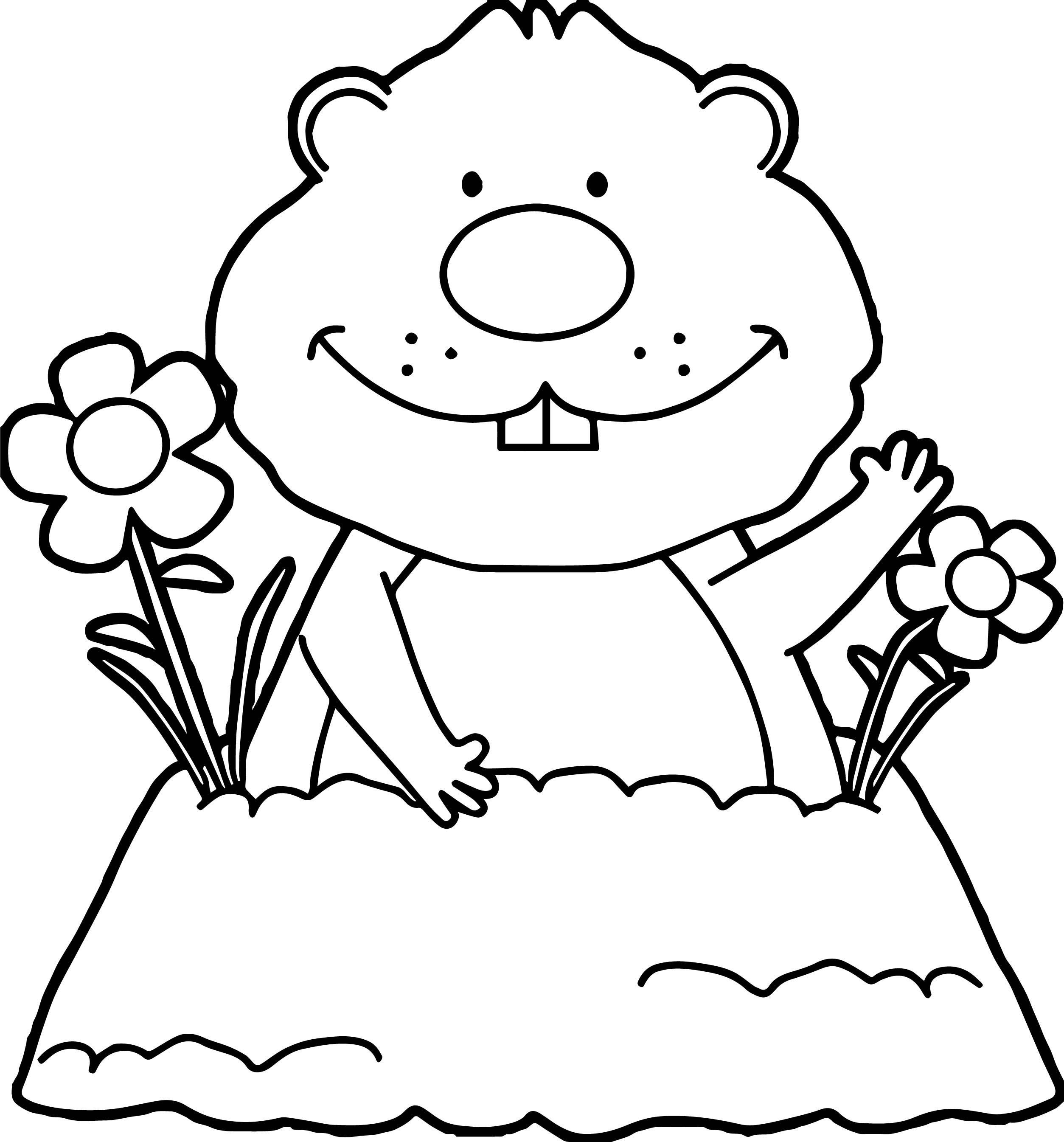 Groundhog Coloring Page Best Groundhogs Coloring Pages