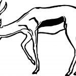 Antelope Drawing Coloring Page
