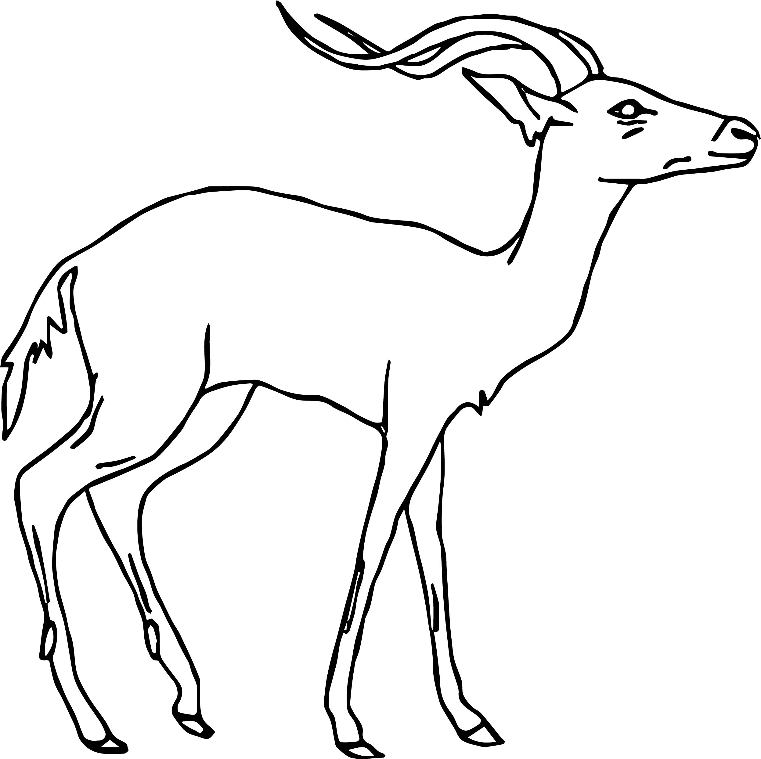 Antelope Side Coloring Page