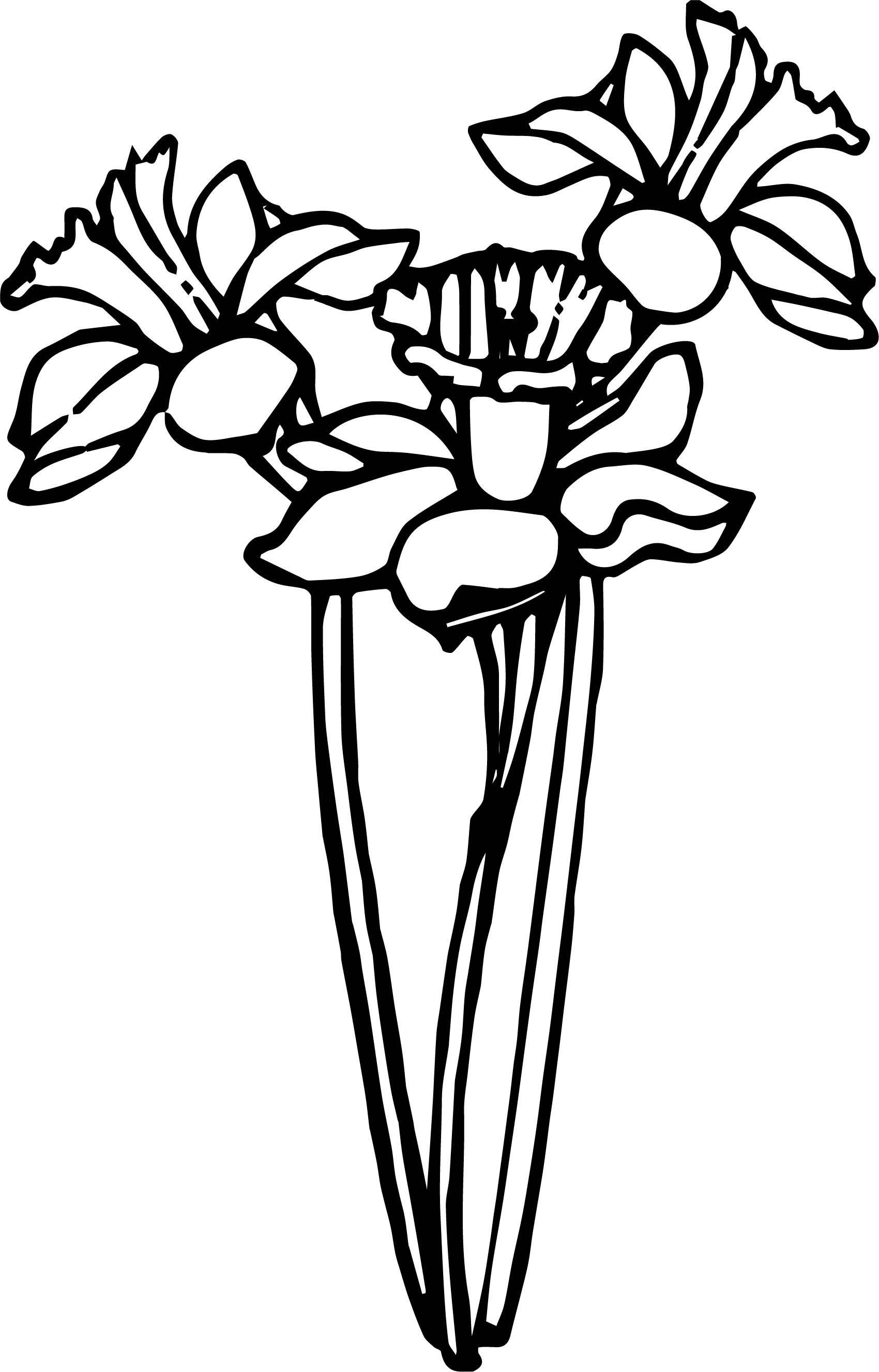 Any Flower Coloring Page
