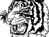 Dangerous Tiger Face Coloring Page