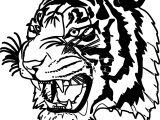 Dangerous Tiger Face Coloring Page