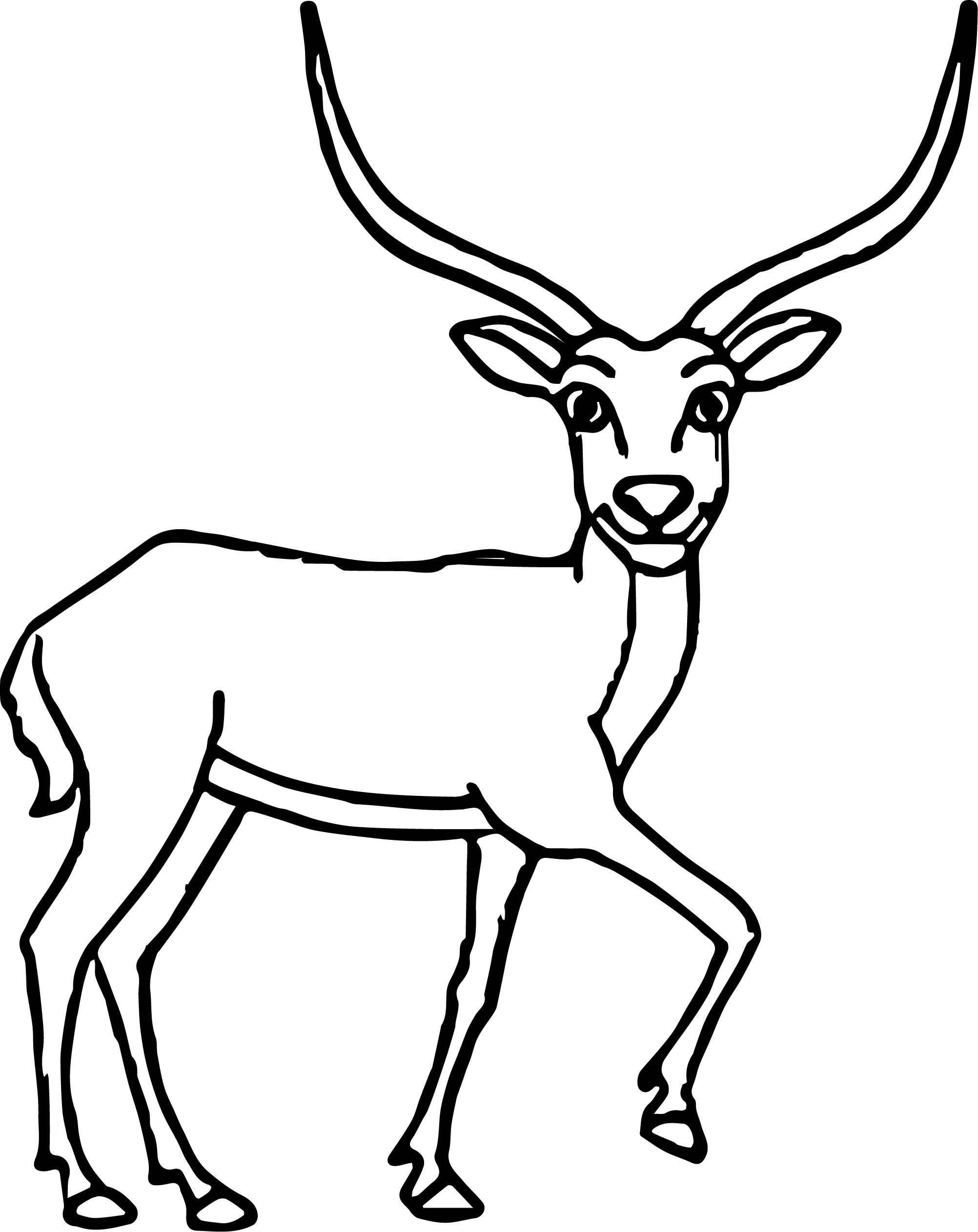 Looking Antelope Coloring Page Wecoloringpage