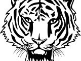 New Tiger Face Coloring Page